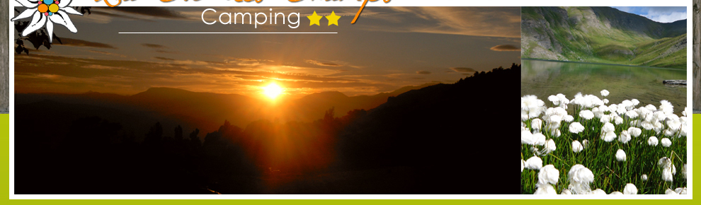 Camping Caravanes Campings Location Chalet Mobil h